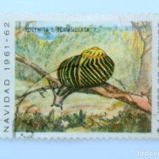 Sellos: SELLO POSTAL CUBA 1961, 1 ¢, NAVIDAD 1961-62 CARACOL DE TIERRA LOCAL, USADO. Lote 230339920