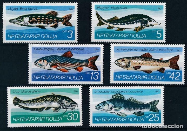BULGARIA 1983 IVERT 2755/60 *** FAUNA MARINA - PECES DE AGUA DULCE (Sellos - Temáticas - Fauna)