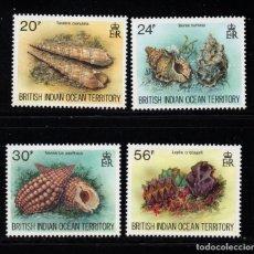 Sellos: OCEANO INDICO BRITANICO 173/76** - AÑO 1996 - FAUNA - CONCHAS. Lote 236190275