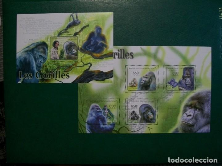 REP.CENTROAFRICANA-2011-HOJITA+BLOQUE EN NUEVO(**MNH)-ANIMALES EN PELIGRO (Sellos - Temáticas - Fauna)