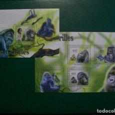 Selos: REP.CENTROAFRICANA-2011-HOJITA+BLOQUE EN NUEVO(**MNH)-ANIMALES EN PELIGRO. Lote 236768355