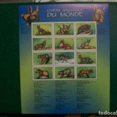 Sellos: CONGO /KINSHASA/-2000-HOJITA EN NUEVO(**MNH)-PERROS SALVAJES DEL MUNDO. Lote 236937155