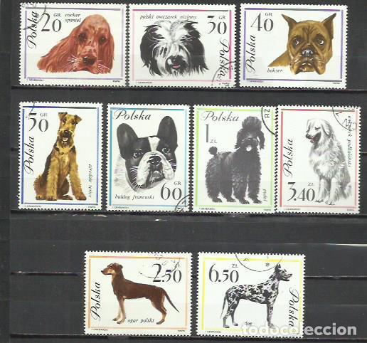 050-POLONIA SERIE COMPLETA PERROS CANES 1963 Nº1232/40 YVERT 9,50€ .BONITOS,GRAN FORMATO, FAUNA, ANI (Sellos - Temáticas - Fauna)