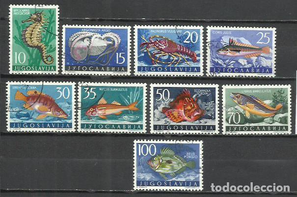020C-YUGOSLAVIA JUGOSLAVIA SERIE COMPLETA PECES 16,60€ 1956 Nº 697/05 FAUNA MARINA BONITOS VENDO S (Sellos - Temáticas - Fauna)