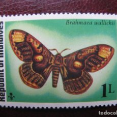 Francobolli: *MALDIVAS, 1975,MARIPOSAS, YVERT 557. Lote 244498225
