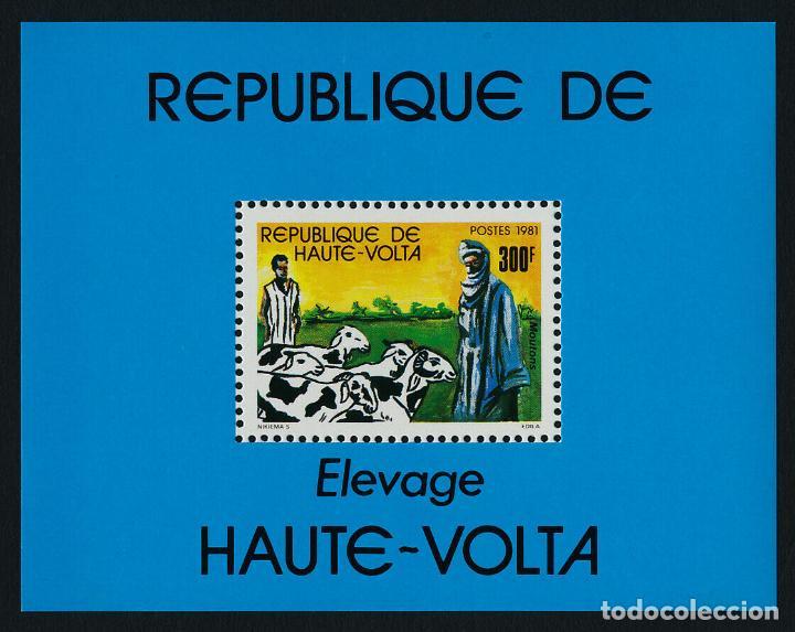 ALTO VOLTA 1981 HB IVERT 18 *** FAUNA - ANIMALES DE GRANJA (Sellos - Temáticas - Fauna)