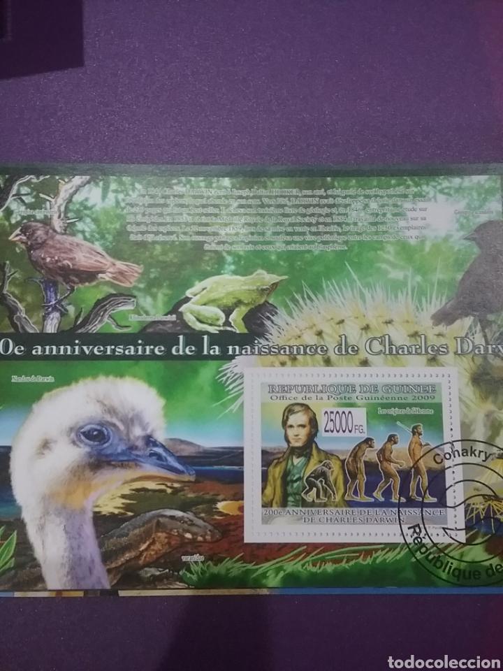 HB R. GUINEA MTDOS/2009/200ANIV/NACIMIENTO/CHARLES/DARWIN/AVES/PAJAROS/EVOLUCION/HOMBRE/HOMOSAPIENS (Sellos - Temáticas - Fauna)