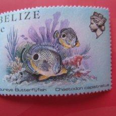 Sellos: *BELIZE, 1984, FAUNA MARINA DE BELIZE, YVERT 658. Lote 255447975