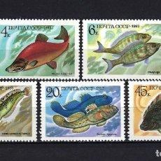 Sellos: 1983 RUSIA-URSS-UNIÓN SOVIÉTICA YVERT 5017/5021 FAUNA ANIMALES, PECES MNH** NUEVOS SIN FIJASELLOS. Lote 262925345