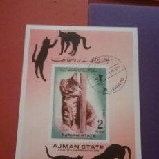 Sellos: HB AJMAN (E.A.U) MTDA/1972/GATOS/PERROS/ANIMALES/DOMESTICOS/FELINO/MAMIFERO/FAUNA/NATURALEZA/. Lote 262938650