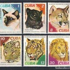 Sellos: ⚡ DISCOUNT CUBA 1977 FELINES IN HAVANA ZOO MNH - CATS. Lote 262955080