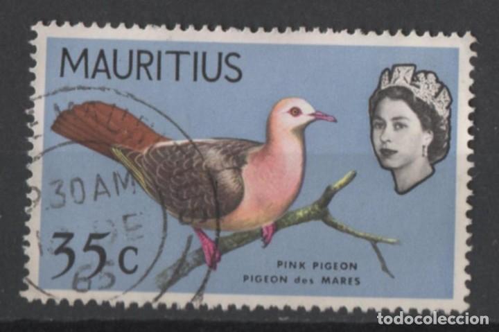 MAURICIO 1967 PALOMA ROSADA USADO * LEER DESCRIPCION (Sellos - Temáticas - Fauna)