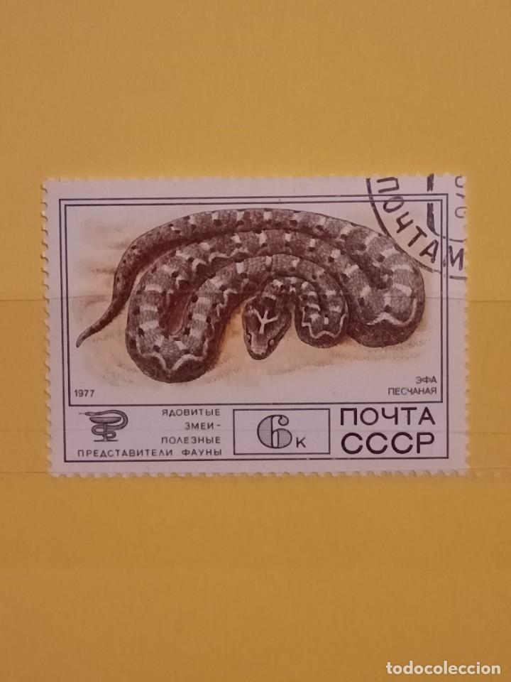 SELLO TEMÁTICO RUSIA - CBA (Sellos - Temáticas - Fauna)