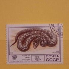 Sellos: SELLO TEMÁTICO RUSIA - CBA. Lote 276095413