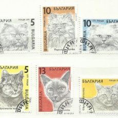 Sellos: BULGARIA 1989 LOTE SELLOS FAUNA FELINOS FELINO GATO GATOS. Lote 277047683