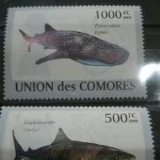 Sellos: SELLO COMORAS (I. COMORES) NUEVO/2009/TIBURONES/BALLENA/VIDA/FAUNA/MARINA/DEPREDADOR/ANIMALES/NATIRA. Lote 277066223