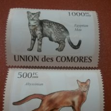 Timbres: SELLO COMORAS (I. COMORES) NUEVO/2009/GATOS/ABISINIO/EGIPCEO/FELINO/FAUNA/MAMIFERO/LEER DESCRIPCIÓN. Lote 277066868