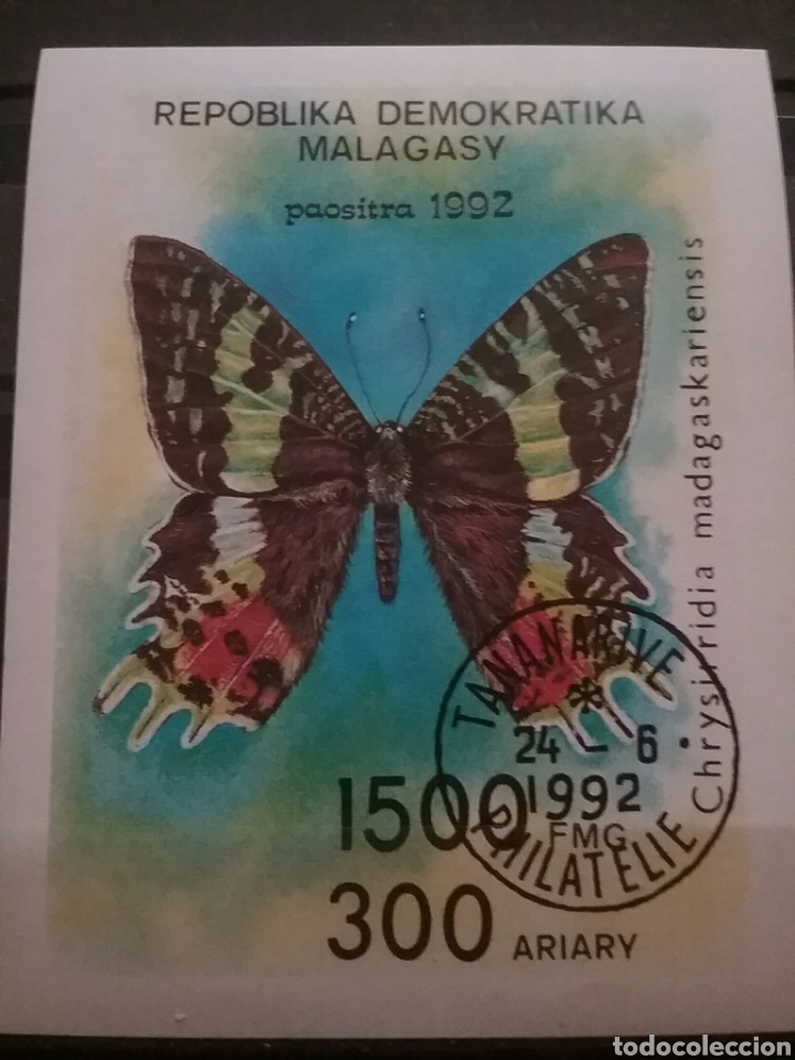 HB MADAGASCAR (MADAGASIKARA) MTDOS SIN DENTAR/1992/MARIPOSA/POLILLA/INSECTO/FAUNA/ANIMALES/ (Sellos - Temáticas - Fauna)