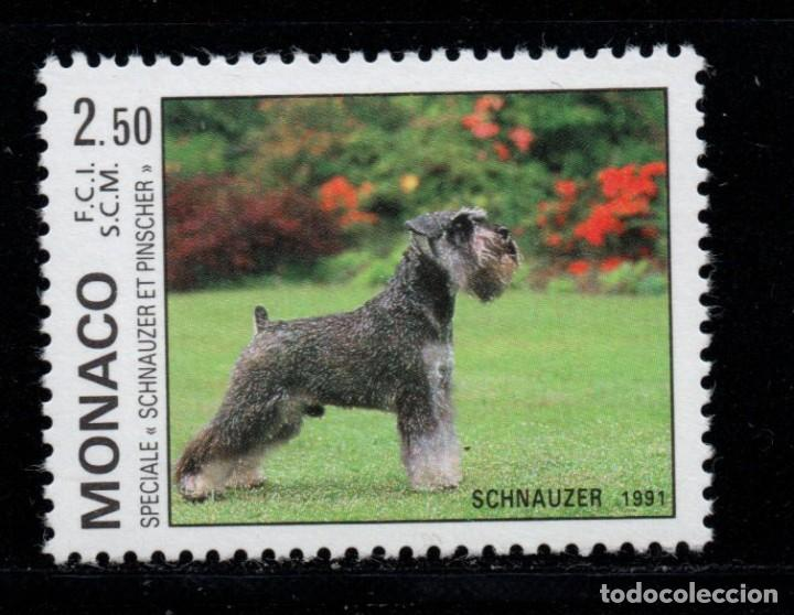 MONACO 1760** - AÑO 1991 - FAUNA - PERROS (Sellos - Temáticas - Fauna)