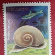 Sellos: COREA DEL NORTE 1977. CARACOLES Y PECES MARINOS. SEA SNAIL (NATICA FORTUNEI) YT:KP 1468,. Lote 288575808