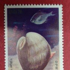 Sellos: COREA DEL NORTE 1977. CARACOLES Y PECES MARINOS. ARKSHELL (ARCA INFLATA) YT:KP 1469,. Lote 288575983