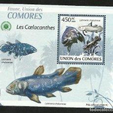 Sellos: UNION DE COMORES 2009 HOJA BLOQUE SELLOS FAUNA MARINA - PECES - PEIXES - PEZ. Lote 291477403