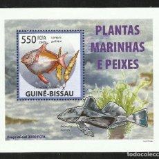 Sellos: GUINEA 2009 HOJA BLOQUE SELLOS FAUNA - PLANTAS ALGAS MARINAS Y PECES - PEIXES. Lote 291478728