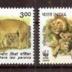 Sellos: INDIA. 1999. LEONES. 4 VALORES ***. WWF.. Lote 297085883