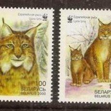 Sellos: BIELORUSIA (BERALUS). 2000. 4 VALORES ***. LINCE. WWF. Lote 297101753