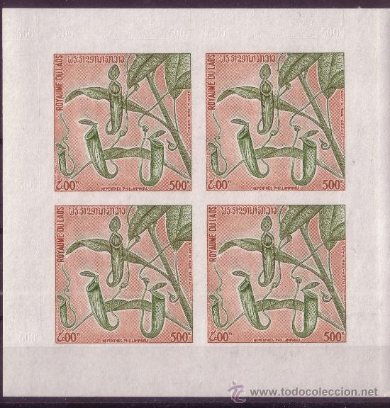 Sellos: LAOS 263/65 Y AÉREO 115 HB*** SIN DENTAR - AÑO 1974 - FLORA - FLORES DE LAOS - Foto 4 - 14172281