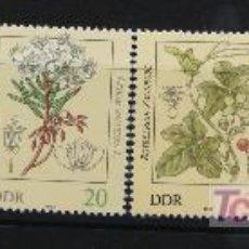 Sellos: ALEMANIA DDR 1982 SELLOS NUEVOS MNH FLORES FLOWERS FL-22. Lote 19446210