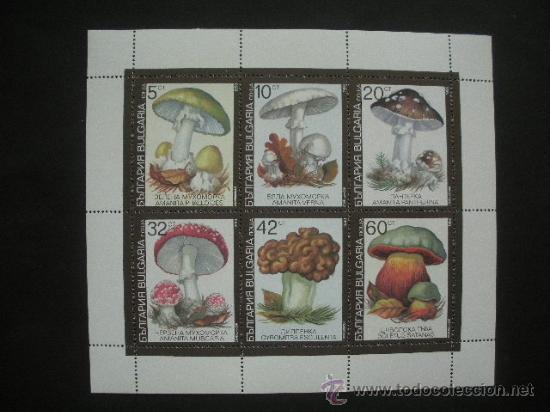 BULGARIA 1991 IVERT 3352/7 *** FLORA - SETAS VENENOSAS (Sellos - Temáticas - Flora)