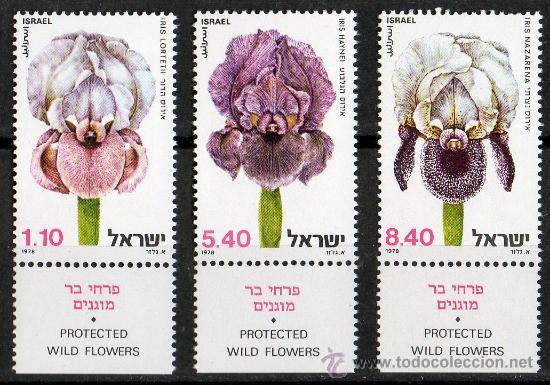 ISRAEL AÑO 1978 YV 724/26*** FLORES Y PLANTAS SILVESTRES PROTEGIDAS - LÍRIOS - FLORA (Sellos - Temáticas - Flora)
