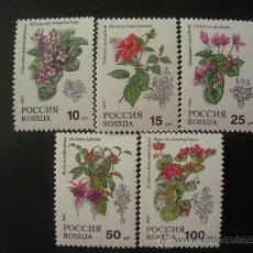 Sellos: RUSIA 1993 IVERT 5988/92 *** FLORA - PLANTAS Y FLORES DE INTERIOR. Lote 31050548