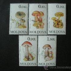 Sellos: MOLDAVIA 1995 IVERT 124/8 *** FLORA - CHAMPIÑONES (I) - SETAS. Lote 34566015