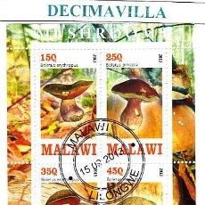 Sellos: FLORA, SETAS, MALAWI, 2013, L497, HOJA-BLOQUE USADA. Lote 42355138