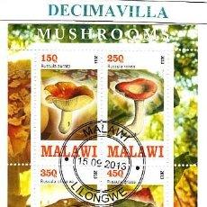 Sellos: FLORA, SETAS, MALAWI, 2013, L496, HOJA-BLOQUE USADA. Lote 42355150