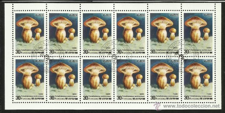 COREA 1988 HOJA BLOQUE TEMATICA FLORA- HONGOS- CHAMPIGNONES (Sellos - Temáticas - Flora)