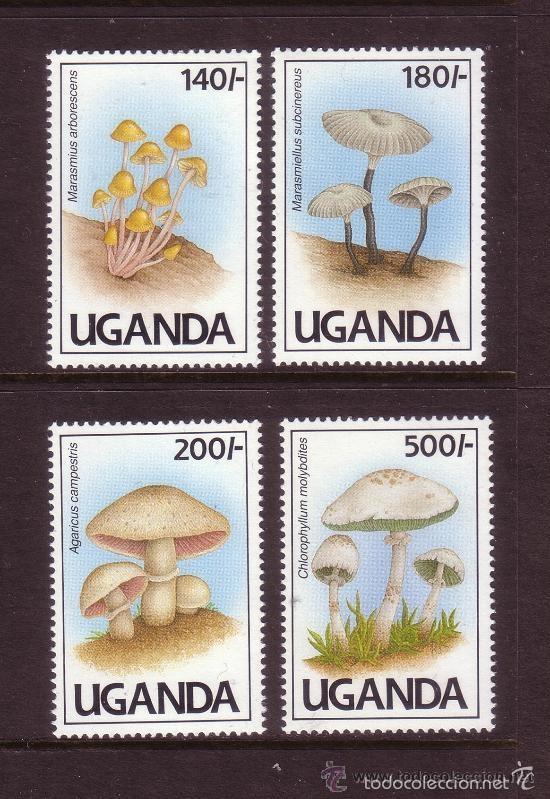 UGANDA 1991 IVERT 762/5 *** FLORA - SETAS (Sellos - Temáticas - Flora)