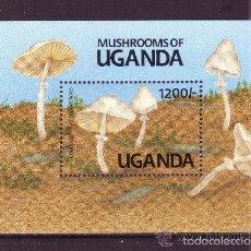 Sellos: UGANDA 1991 HB IVERT 132 *** FLORA - SETAS. Lote 57160797