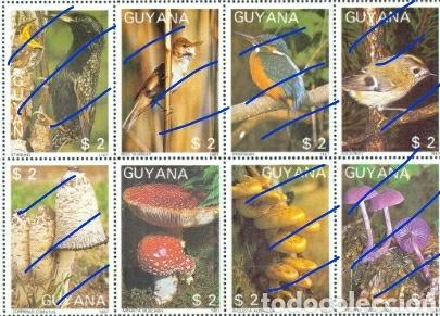 Sellos: Sellos de R. C. Guyana (Guayana) mtdos. 1988. Hongos. Setas. Amanita muscaris. Plantas. Naturaleza. - Foto 2 - 110931196