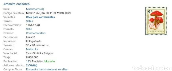 Sellos: Sellos de Bulgaria nuevos. 1961. Hongos. Setas. Plantas. Naturaleza. Plantas. Champiñones. Ecosistem - Foto 3 - 128025484