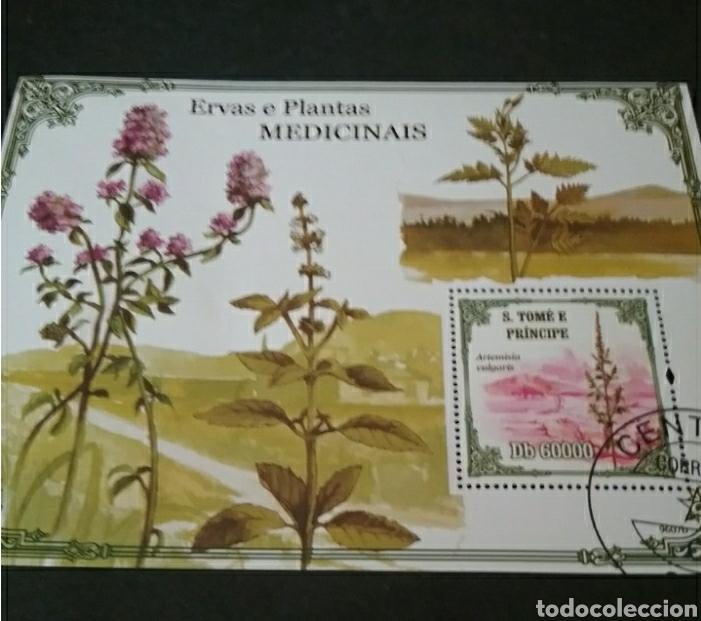 HB S. TOMÉ Y PRÍNCIPE MTDOS/2009/ARTEMISA/PLANTAS MEDICINALES/PAISAJES/FLORES/NATURALEZA/HIERVAS/ (Sellos - Temáticas - Flora)
