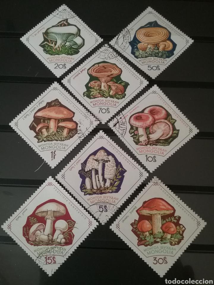 SELLOS R. MONGOLIA MTDOS/1964/HONGOS/SETAS/MISCALOS/FLORA/PLANTAS/FLORES/AMANITA/NATURALEZA/DESCOMPO (Sellos - Temáticas - Flora)