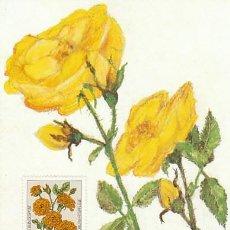 Sellos: ALEMANIA IVERT 983, ROSA FLORIBUNDA, TARJETA MÁXIMA DE 14-10-1982. Lote 142177942