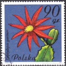 Sellos: 1981 - POLONIA - FLORES DE PLANTAS SUCULENTAS - YVERT 2599. Lote 143503890