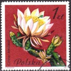 Sellos: 1981 - POLONIA - FLORES DE PLANTAS SUCULENTAS - YVERT 2600. Lote 143504166