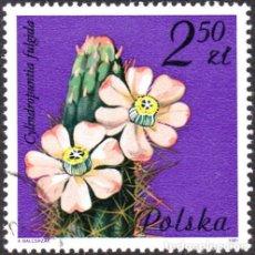 Sellos: 1981 - POLONIA - FLORES DE PLANTAS SUCULENTAS - YVERT 2602. Lote 143504658