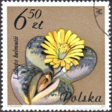 Sellos: 1981 - POLONIA - FLORES DE PLANTAS SUCULENTAS - YVERT 2605. Lote 143505146