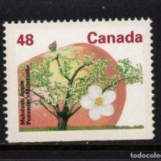 Sellos: CANADA 1225A** - AÑO 1991 - FLORA - ARBOLES DEL CANADA. Lote 151410742